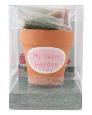 FD_12735 Fairy garden starter pack boxed