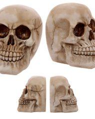 SK233_001 skull bookends 1