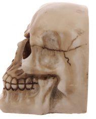 SK233_003 skull bookends 4