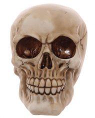 SK233_006 skull bookends 6