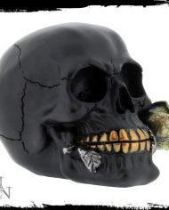 BLACK ROSE 4-500×500