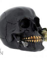 Black Rose From Dead 2