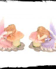 delicate dreams 3