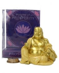 buddha of prosperity 1